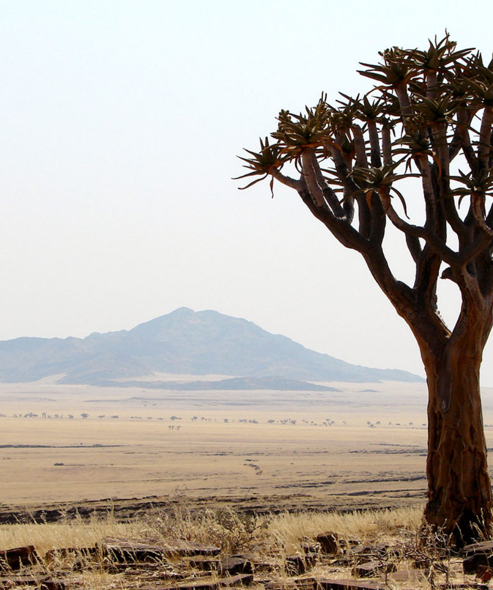Namiba-Naukluft-Park